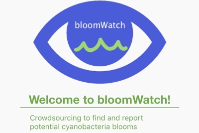 Updates on the bloomWatch app