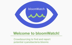 Download bloomWatch app