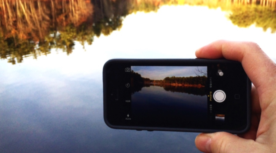 bloomWatch equipment - any iOS or android device with GPS